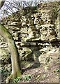SO5187 : Limestone Exposure near Munslow, Shropshire by Roger  Kidd