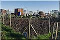 SE9827 : Allotments, Swanland by Paul Harrop