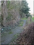 TR3153 : View along the footpath through Sangrado's Wood by Nick Smith