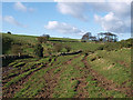 NZ6715 : Footpath to Stanghow by Stephen McCulloch