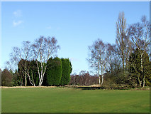 SO8388 : Golf Course  south of Highgate Common, Staffordshire by Roger  Kidd