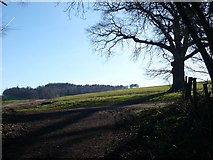 TR0149 : Footpath to Eastwell Park from the end of Church Lane by pam fray