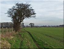 SE9746 : Bridleway, Holme on the Wolds by Paul Harrop