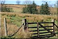 SE7496 : Gate, Hamer Beck by Mick Garratt