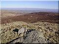 NY5208 : Summit, Great Saddle Crag by Michael Graham