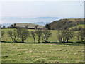 SJ3100 : Rorrington Hill from Gorsty bank by Dave Croker