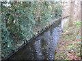 TQ2267 : Beverley Brook in Motspur Park by Nigel Cox