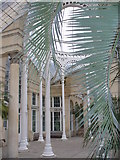 TQ1776 : Inside the Great Conservatory by Colin Smith