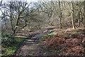SO7637 : Plank Bridge, Hollybush Hill by Bob Embleton