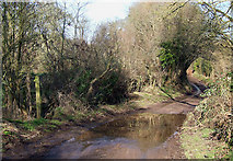 SO8093 : Ford and Lane, Draycott, Shropshire by Roger  Kidd