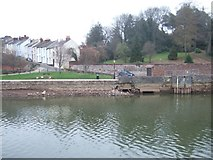 SX9291 : River bank, reduced flow in river Exe by Larkbeare House by David Smith