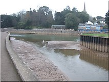 SX9291 : Mouth of Exeter Canal, with Exe in reduced flow by David Smith
