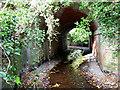 SJ4006 : Old railway bridge over stream by Dave Croker