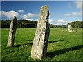 NR8297 : Nether Largie Standing Stones, Kilmartin by Wendy Kirkwood