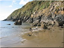 SH1626 : Beach and rocks under the coastal path at Porth Simdde by Julie Cookson