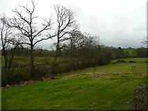T0654 : Grazing land near Camolin Park by Jonathan Billinger