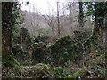 SM9935 : Mossy ruins by ceridwen