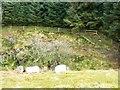 SO2328 : Towards Mynydd Du Forest by Graham Horn