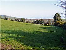 T1667 : Pasture land at Ballyconlore by Jonathan Billinger