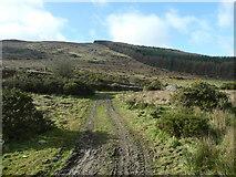 T1068 : Annagh Hill by Jonathan Billinger