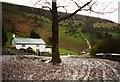 SO2676 : Muddy Brynorgan by Graham Horn