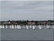 J5182 : Yachts, Ballyholme Bay [1] by Rossographer