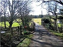 NZ2542 : Lane approaching Baxter Wood Farm by Roger Smith