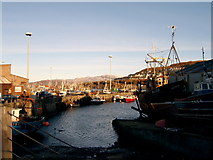 NM6797 : Mallaig harbour by Callum Black