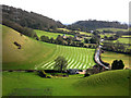 SU6822 : View east from Park Hill. East Meon by Chris Gunns