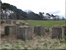 NT6378 : Anti tank blocks, Hedderwick Sands by Lisa Jarvis