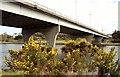 C8431 : The Sandelford Bridge, Coleraine by Albert Bridge