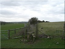 TQ3112 : Ditchling boundary stones by Peter Cox