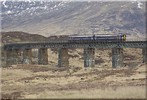 NN4258 : Rannoch Viaduct by Stephen McKay