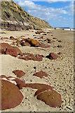 SZ1790 : Ironstone boulders on the beach, Hengistbury Head by Jim Champion