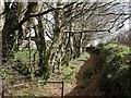 SX1084 : Private path off Trefrew Road by Derek Harper