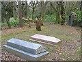 NR7832 : Saddell Abbey graveyard (4) by Johnny Durnan
