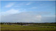 N7713 : The Curragh Racecourse (2) by Harold Strong