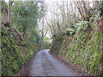 SS6744 : Sunken lane, Parracombe by Stephen Craven