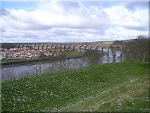 NT9953 : Royal Border Bridge by Nick Mutton