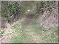 SP0747 : Bridle Path, Offenham by Bill Johnson