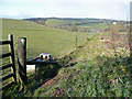 SX1469 : Footpath west from Cabilla Moorland by Jonathan Billinger
