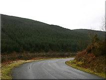 SH8010 : Bend on mountain road by liz dawson