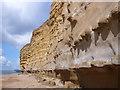 SY4888 : Burton Bradstock Cliffs, Dorset by Nigel Mykura