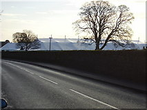 NT7233 : Erecting the marquees, Kelso by James Denham