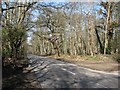 TG1416 : View across Reepham Road by Evelyn Simak