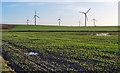 TA3821 : Wind Farm, Out Newton by Peter Church