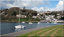 SX2553 : Looe Station from the Millpool carpark by roger geach