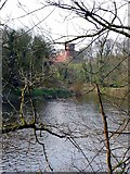 NS6859 : Bothwell Castle from the Clyde Walkway by Gordon Brown