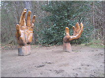"""NZ1458 : """"Hands"""", Chopwell Wood by Oliver Dixon"""