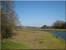 SW7838 : Looking down the creek towards Devoran from Perranarworthal by Rod Allday